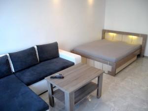 Mieszkanie do wynajecia w Poznaniu (3)