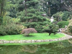 Ogród i Działka (1)